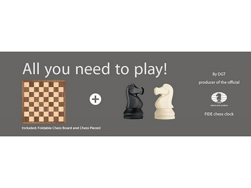 DGT Chess Box Grey